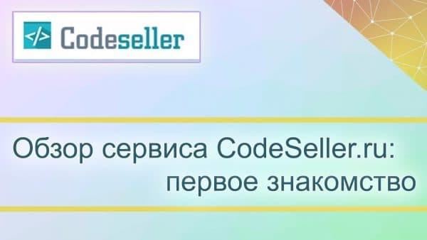 CodeSeller.ru для новичка: видео